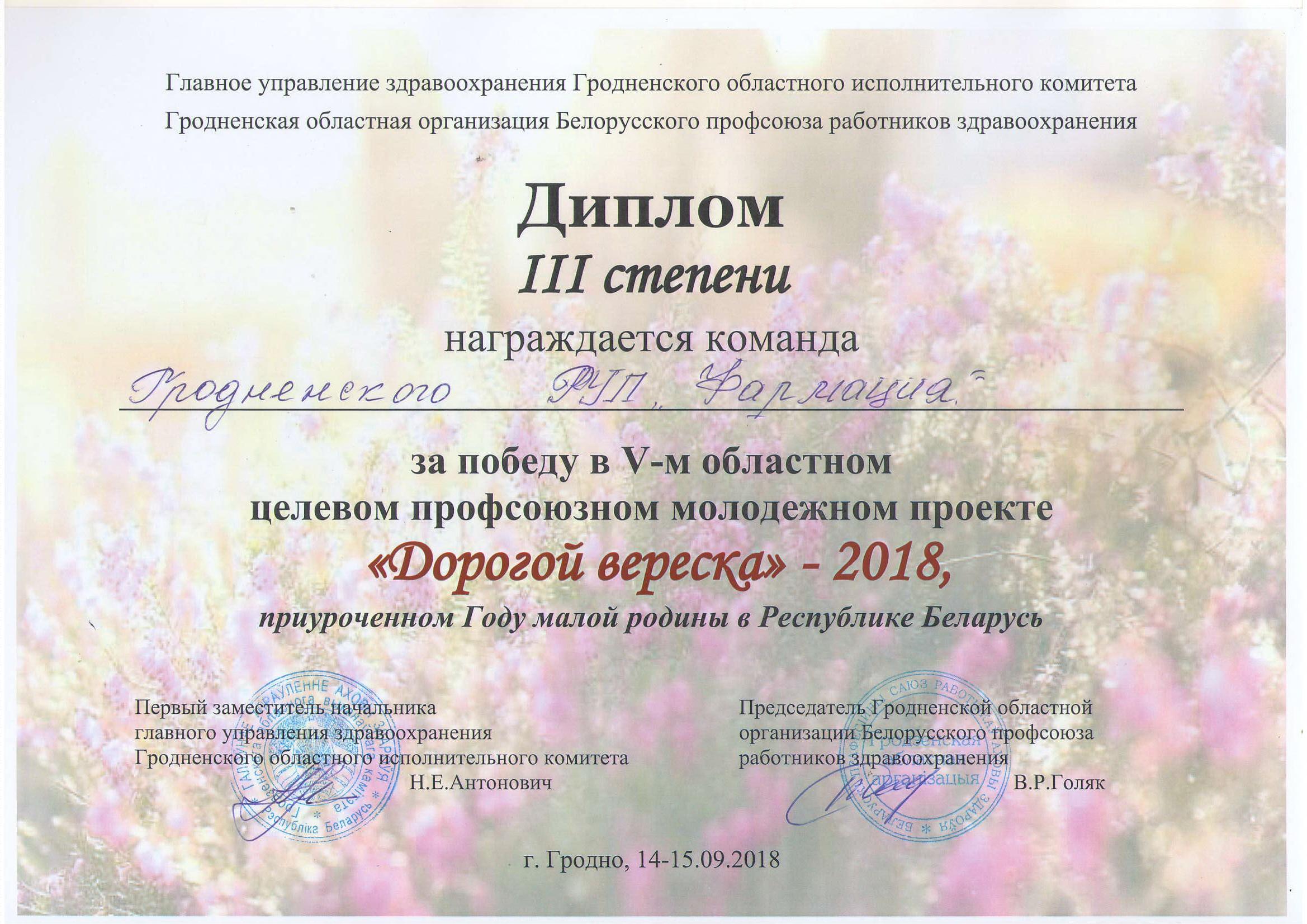 Диплом дор.вер.3 м.2018-1